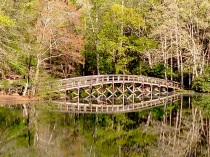 The iconic bridge at Hungry Mother State Park.