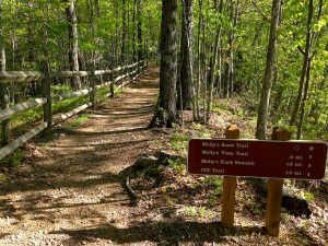 Well-maintained and signed trails