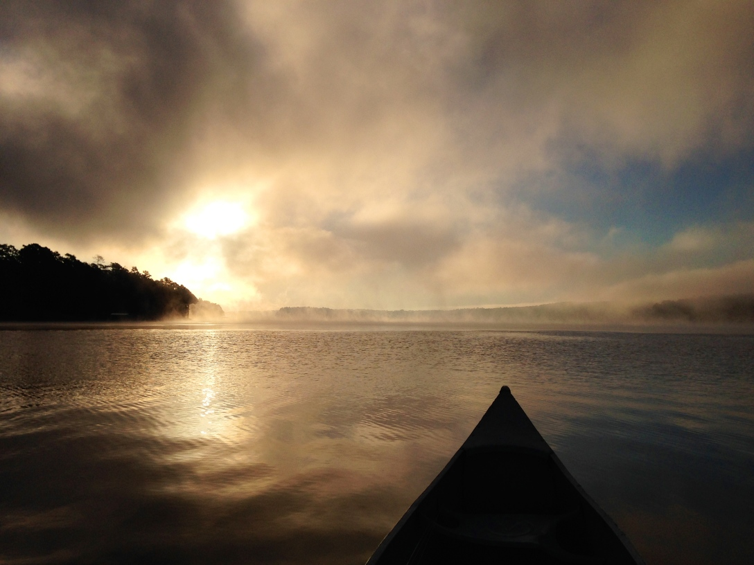Pond morning.jpg